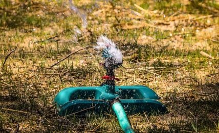 Best Impact Sprinklers