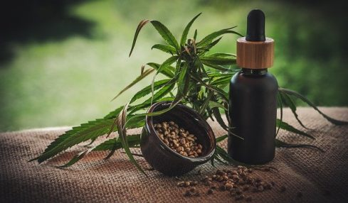 5 Top Cannabis Products